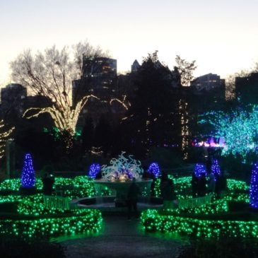 Garden Lights at Atlanta Botanical Garden