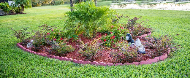 Landscaping Your Perfect Front Yard